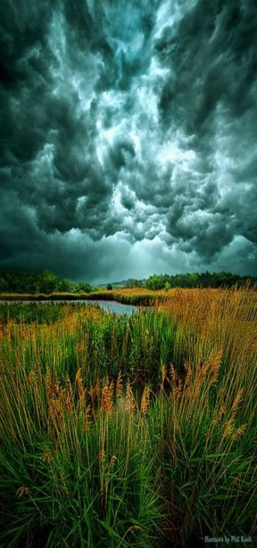 Into the Wind - Storm by Phil Koch. Milwaukee, Wisconsin, USA.