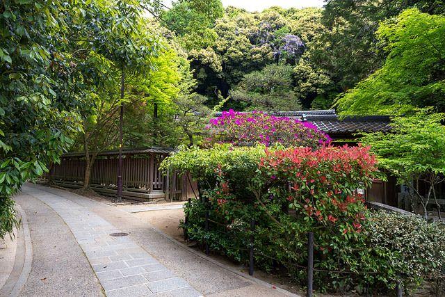 宇治上神社 / Ujigami-jinjya Shrine   I want to introduce wonderfu…   Flickr