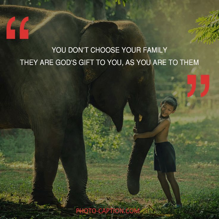 ''You don't choose your family, They are God's gift to you, As you are to them.'' Check out the link in the bio for more family captions #Family #love #fun #friends #happy #kids #life #sister #baby #parenting #children #brother #me #moms #dads #mums #MommyMonday #motherhood #momlife #quote #quotes #quotegram #quoteoftheday #caption #captions #photocaption #FF #instafollow #l4l #tagforlikes #followback