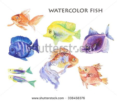 Watercolor hand drawn fish illustration isolated on white background. - stock photo