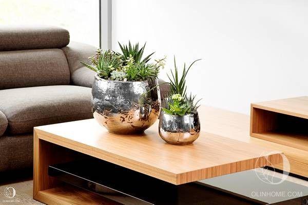 Парная композиция из комнатных растений: алоэ, пахифитума, сансевиерии, крассулы, каланхоэ, хавортии. Уникальные кашпо с декором ручной работы.