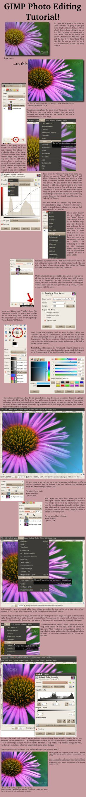 GIMP Photo Editing Tutorial by miontre