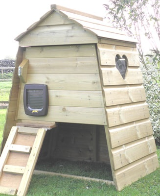 Outdoor Cat House | Cat Kennel | Cat Run | Completely Cats & Dogs
