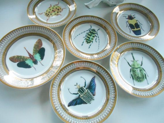 BEAUTIFUL GOLD BUG PLATES, DIFFERENT OPTIONS  WE COMBINE SHIPPING! ONLY $5 PER ADDED PLATE  I infused these stunning plates with the image of a