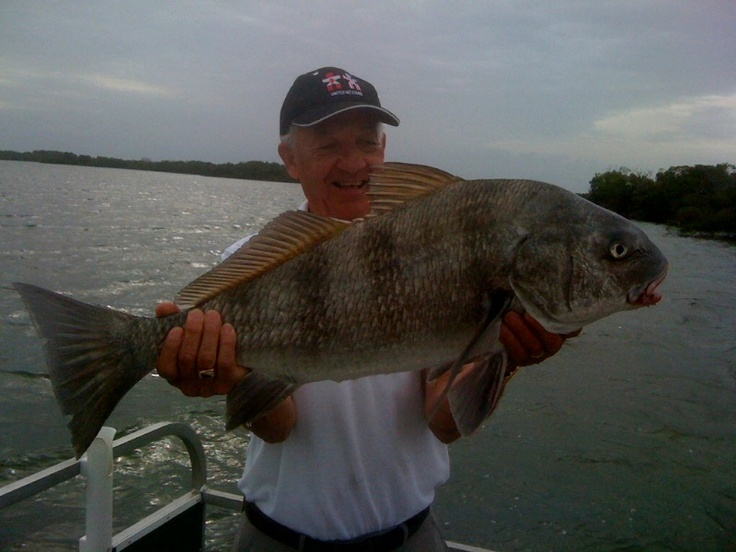 66 best florida charter fishing images on pinterest for Fort myers fishing party boats