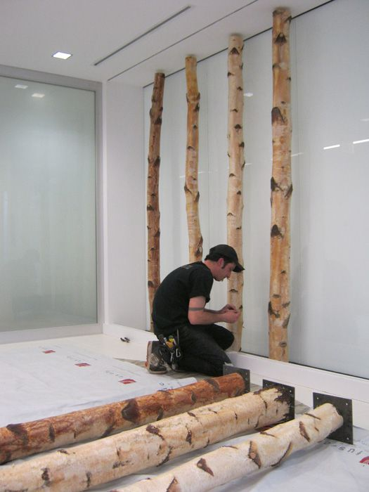 LET'S STAY: Birch Poles & Branches in interiors : Green Decor & Design. Backpainted glass panels with birch trunks. (phase 2 stuff) Could do a backpainted glass backsplash in the exam rooms and use birch branches to hold up shelf. Could also do this in the contact lens room on south wall.