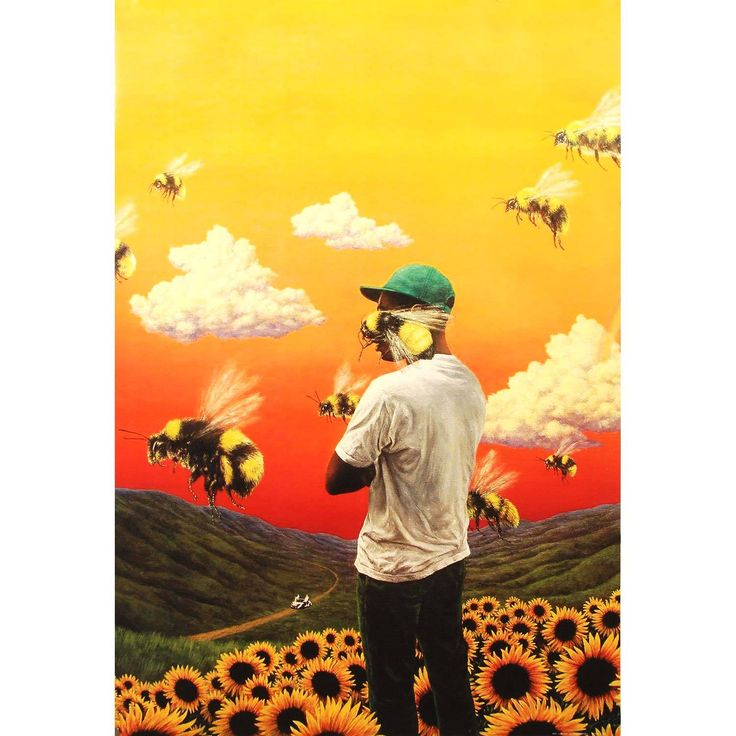 Flower Boy Domestic Poster in 2020 Music album cover