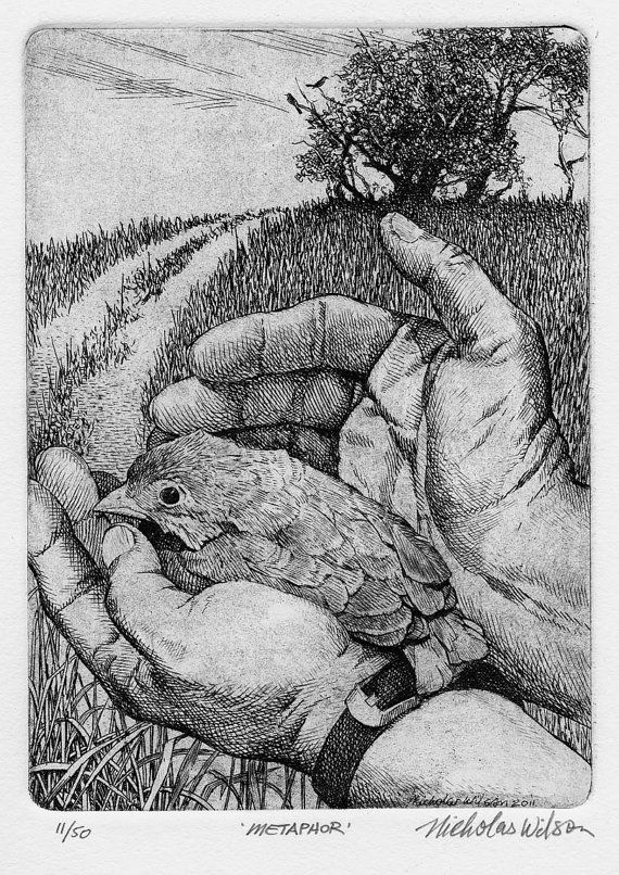 Nicholas Wilson Etching of a Bird in Hand METAPHOR by tjstortuga, $65.00