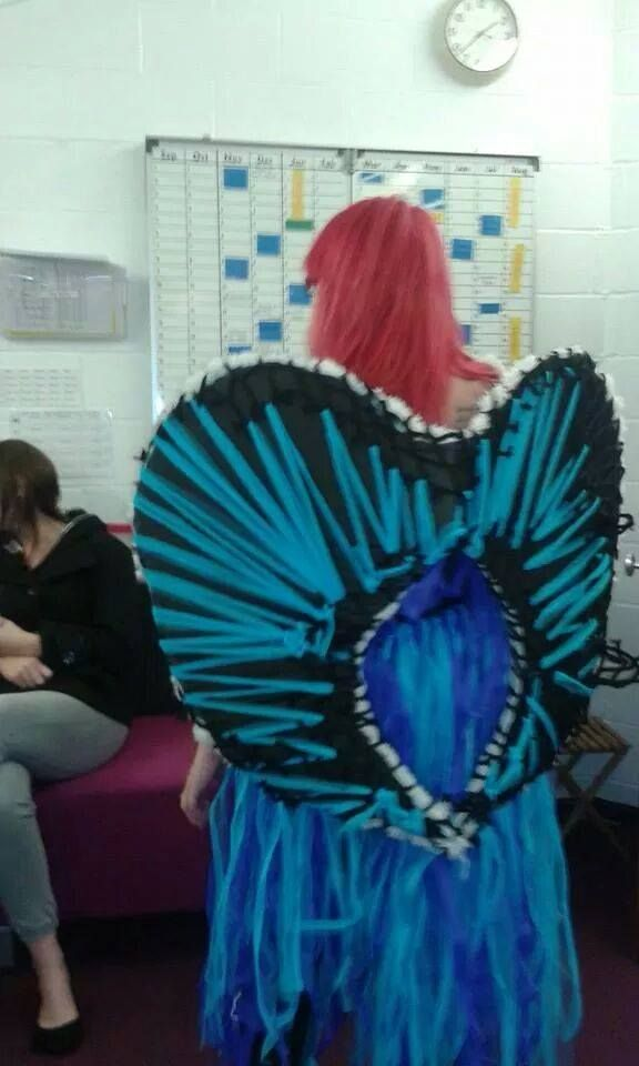 Back of the wings - the blue ribbon stuff holds the netting on so it can be taken off. they are also reversible so you can chose which side to show