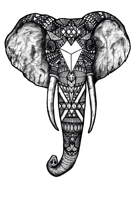 Line Drawing Elephant Face : Best indian art ideas on pinterest elephant