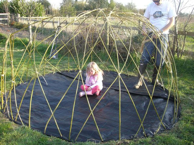 DIY -build a willow dome playhouse. he best kind of willow is not weeping willow or shoots from large willow trees (they'll get too big). Instead look for willow that grows weedy and reedy by creaks and streams in your area. Take thumb-size cuttings 6-8′ long. Park them in water in a cool dark place. And when you're ready, simply push them in the ground and water, water, water. Woo-hoo!