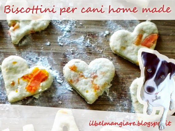 Biscotti per cani home made: realizziamo in casa snack salutari per i nostri amici a quattro zampe!