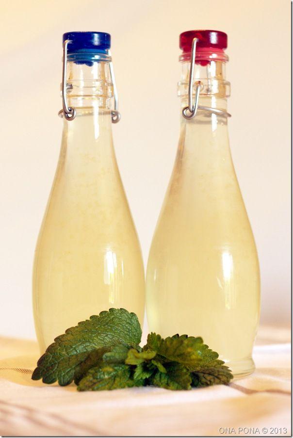 Niets lekkerder dan een verfrissend glas limonade in de zomer. Met een citroenmelisseplant die haast groeit terwijl ik er naar kijk, komt er hier dan ook regelmatig citroenmelisselimonade op tafel....
