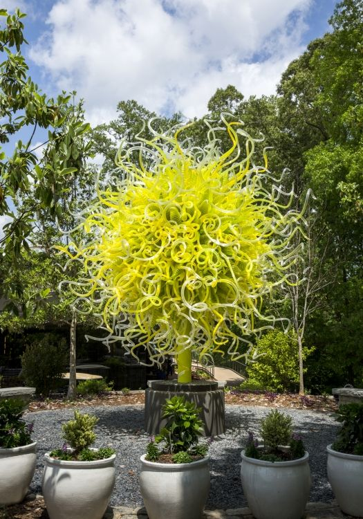 159 Best Images About Chihuly Art Glass Outdoor
