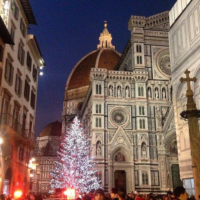 L'albero sotto il Duomo di #Firenze