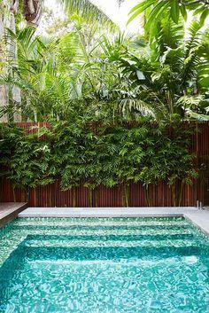 Fancy Landscapers Landscape Design Company Harrison us Landscaping Sydney NSW Bondi