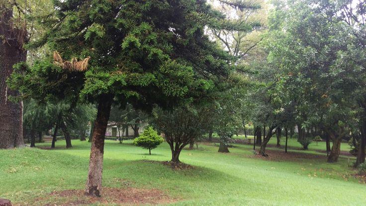 Parque ecológico Loreto y Peña pobre Tlalpan