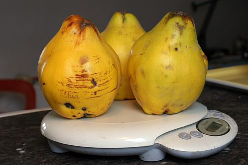 poached quince - make for roast duck, reduce sauce to use as glaze for bird. sub red wine for water?