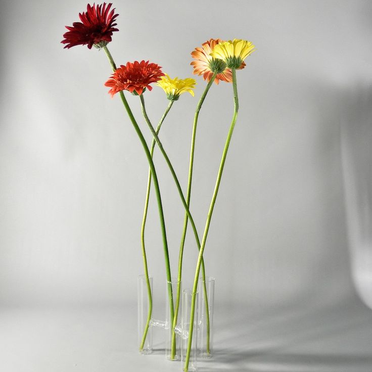 Four Stems Glass Vase - Wholesale Flowers and Supplies