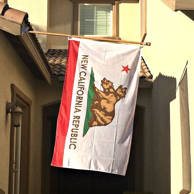 New California Republic Flag by OMGCoolStuff on Etsy https://www.etsy.com/listing/256986976/new-california-republic-flag