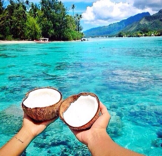 Too bad I don't like coconut:;