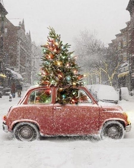 how my car would look if I stuck a tree in it..