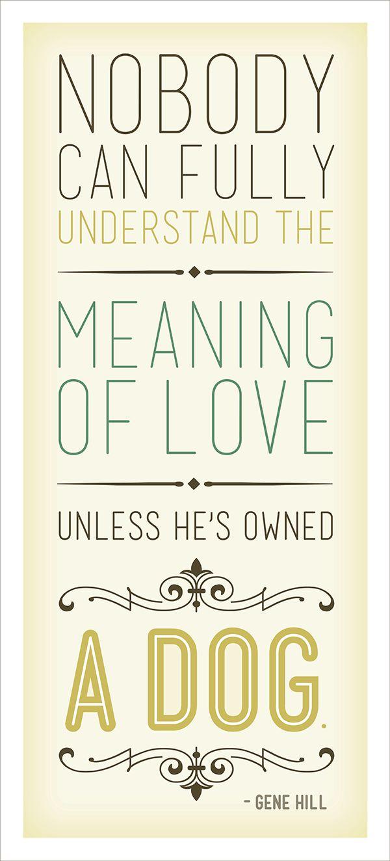 Nadie puede entender por completo el significado del amor a menos que sea dueño de un perro. Citas sobre perros.