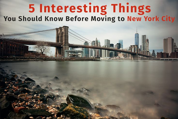 5 Interesting Things You Should Know Before Moving to New York City   #Professionalmovers, #movingandstorage, #bestlongdistancemovingcompany, #Librarymovers, #corporatemovingservices, #localmovers, #militarymovers, #localmovingcompany, #RelocationcompaniesNJ