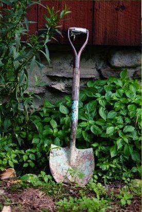 Marion travaille aussi dans les jardins de Versailles. Parce que le père d'elle est jardinier.