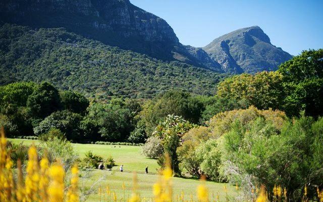 Das Galileo Open Air Cinema in Kirstenbosch.  Wine, dine and enjoy! Klassiker und Dokumentationen unter afrikanischem Himmel.