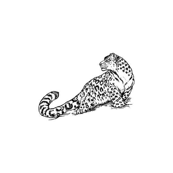 Leopard 5 Jaguar Tiger Big Cat Predator Logo Svg Eps Png Etsy Snow Leopard Tattoo Leopard Tattoos Photoshop Backgrounds