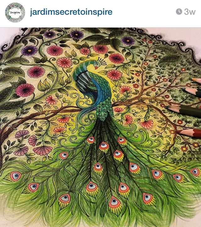 Adult Coloring Books Colouring Secret Gardens Johanna Basford Garden Drawing Painting Peacocks Rainbow