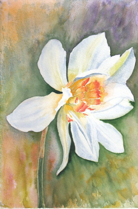 Spring Flower Watercolour Note Cards, Four Narcissus Flower Art Notelets,Floral Artwork Blank Notecard set. Beach House Wall Art,