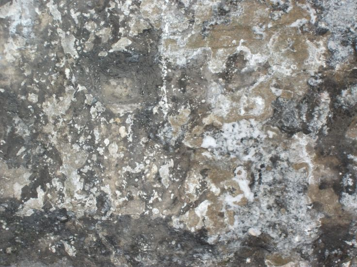 This was the underside of an old bridge near my college. I took this so that I have another variant of a rock/ stone texture and to stop the environment becoming repetitious.