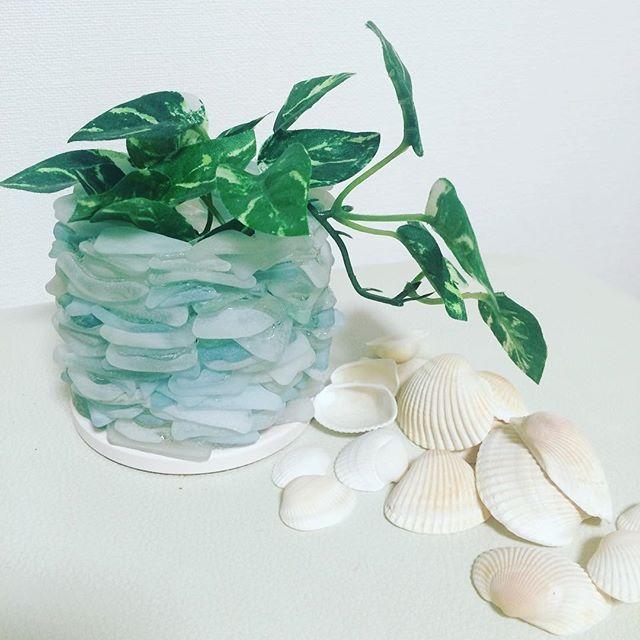 【kyoko_95】さんのInstagramをピンしています。 《観葉植物ポット☆ #ハンドメイド#シーグラス#ビーチグラス #観葉植物#観葉植物ポット#鉢カバー#植木鉢#花瓶#貝殻#貝#シェル#ガラス#海#雑貨#インテリア》