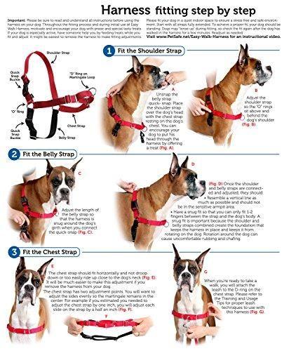 Easy Walk Harness In 2020 Easy Walk Dog Harness Easy Walk Harness Dog Harness