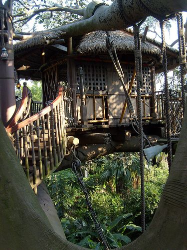 Swiss Family Robinson!: Houses Escape, Db Treehouse, Trees Houses Little, Robinson Trees, Jungles Houses, Tree Houses, Houses Little Houses, Jungles Trees, Rainforests Treehouse