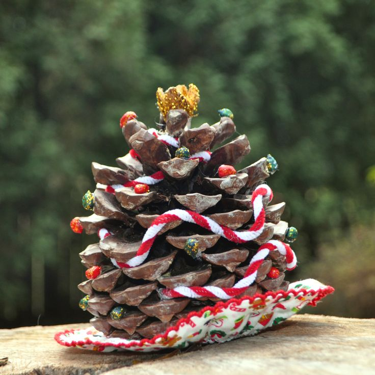 Amazing Mini Christmas Tree from Torrey Pine Cone , makes fantastic Christmas Craft.