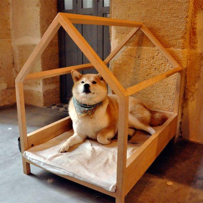 Мебель для собак внутри дома - http://mebelnews.com/?p=1419