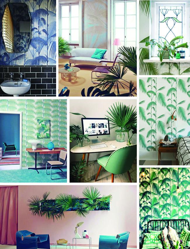 tropiske drømme i boligen # 1