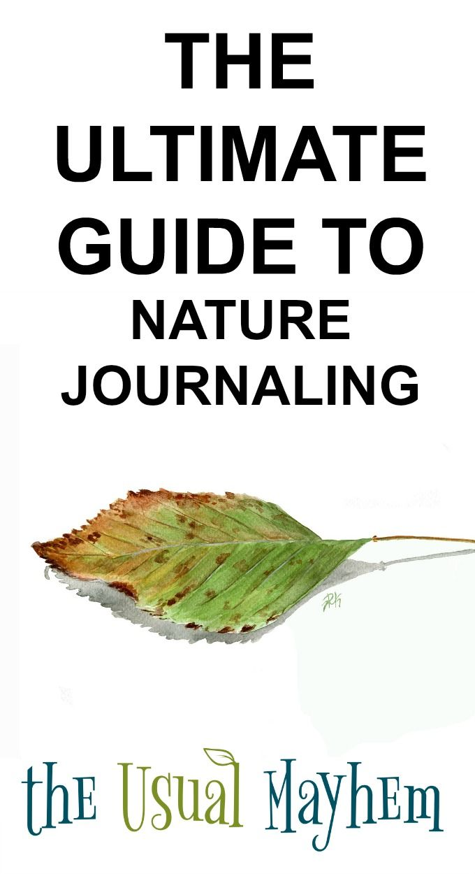 the ultimate guide to nature journaling