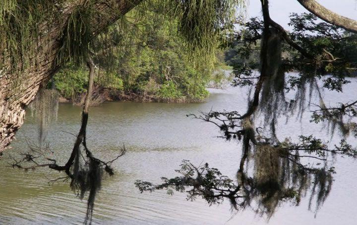 Atractivos Ecológicos en Guacarí | livevalledelcauca.com