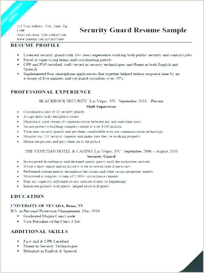 Cv Format Pdf For Hotel Job