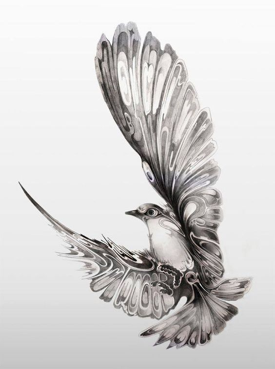 Image result for dove tattoo