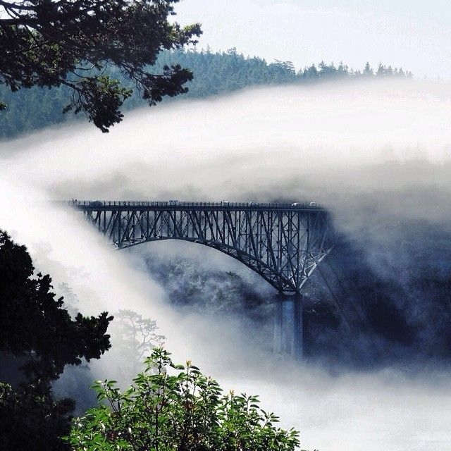 #EarthCache GC1E057 at Deception Pass -- the most popular state park in Washington! Discover what geological process is in the works developing this natural beauty.