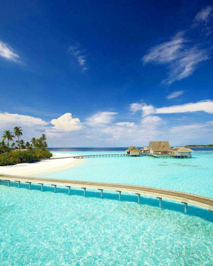 Maldives Beach: 914 Best Bora-bora, Maldives Images On Pinterest