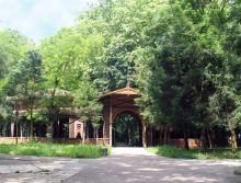 BUZIAS - PARK, FORREST AND SPA | Tourism Banat