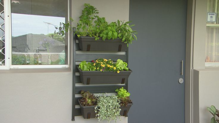 Do you love vertical gardens? Take inspiration from Better Homes and Gardens TV DIY presenter, Adam Dovile, and create an edible garden for your place. Want to learn more? Click here for a video tutorial to help you create your own: www.bunnings.com.au/alfrescogarden
