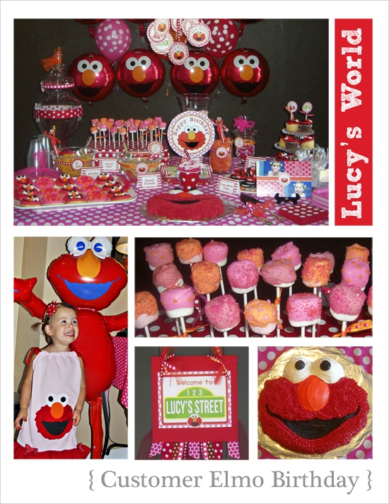 Elmo, Sydney, Sesame Street, Party Ideas, Cake Pops  ~ 205133_Birthday Party Ideas Sydney