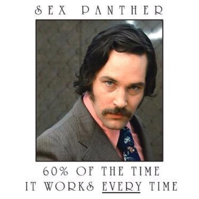 Ron Burgandy Sex Panther 41